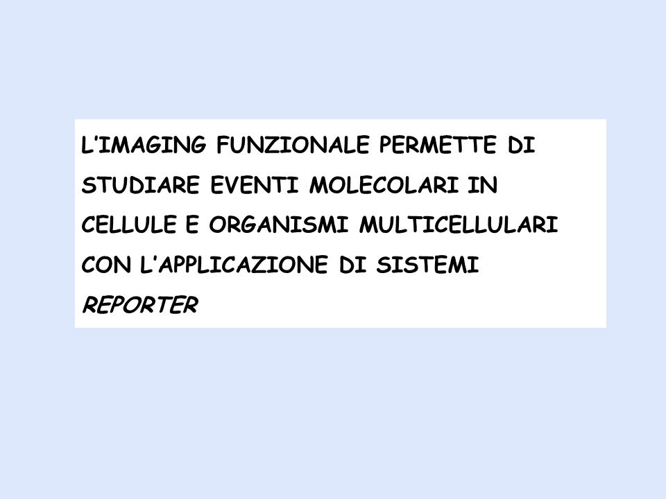 SISTEMA REPORTER = MOLECOLE FACILMENTE VIASUALIZZABILI E MISURABILI CHE RIPRODUCONO FEDELMENTE LEVENTO MOLECOLARE IN STUDIO Atr i reporter più uilizzati: Tra i reporter più utilizzati: cloramfenicolo acetiltransferasi, fosfatasi alcalina, beta galattosidasi, beta-glucuronidasi, luciferasi, proteina verde fluorescente