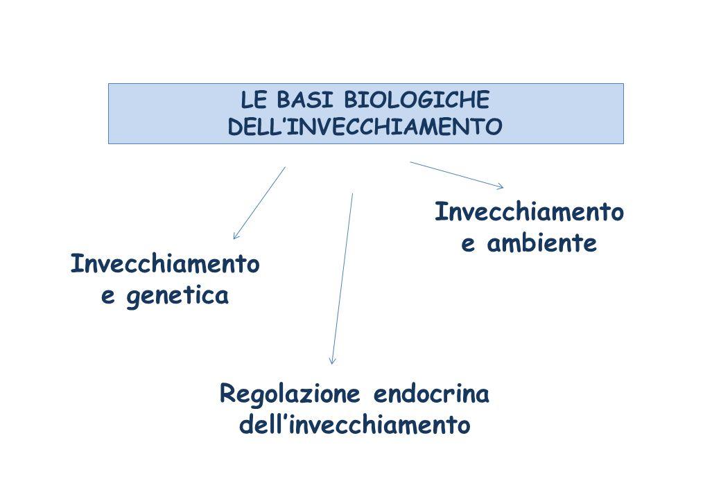 LE BASI BIOLOGICHE DELLINVECCHIAMENTO Invecchiamento e genetica Regolazione endocrina dellinvecchiamento Invecchiamento e ambiente