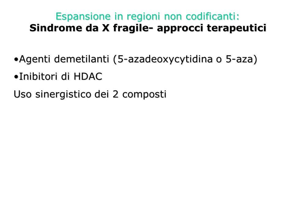 Espansione in regioni non codificanti: Sindrome da X fragile- approcci terapeutici Agenti demetilanti (5-azadeoxycytidina o 5-aza)Agenti demetilanti (