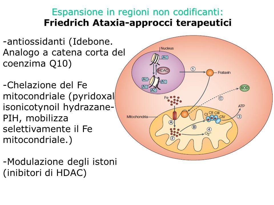 Espansione in regioni non codificanti: Friedrich Ataxia-approcci terapeutici - -antiossidanti (Idebone. Analogo a catena corta del coenzima Q10) - -Ch