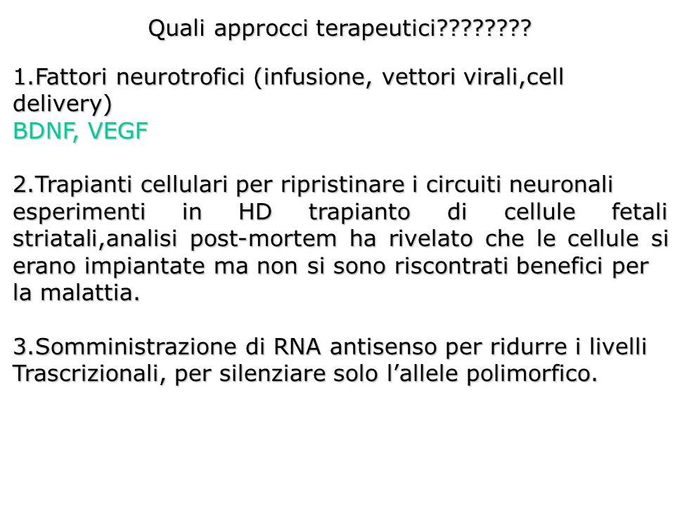 Quali approcci terapeutici???????? 1.Fattori neurotrofici (infusione, vettori virali,cell delivery) BDNF, VEGF 2.Trapianti cellulari per ripristinare