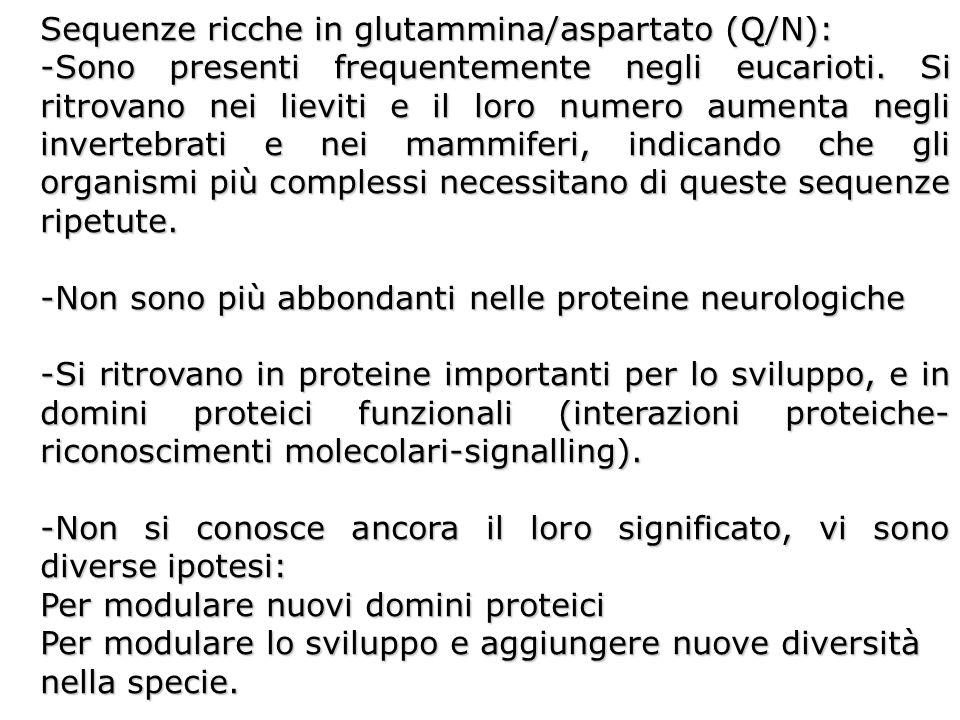 Sequenze ricche in glutammina/aspartato (Q/N): -Sono presenti frequentemente negli eucarioti. Si ritrovano nei lieviti e il loro numero aumenta negli