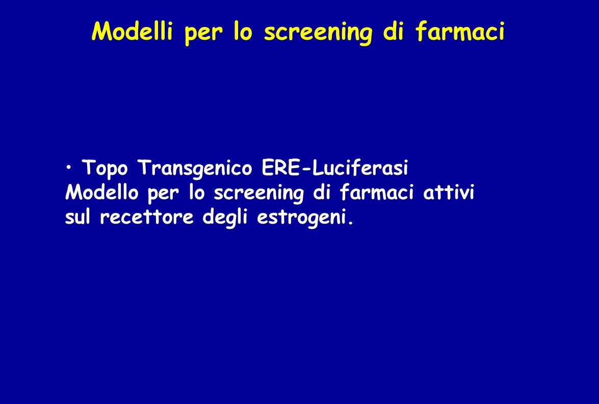 Modelli per lo screening di farmaci Topo Transgenico ERE-Luciferasi Modello per lo screening di farmaci attivi sul recettore degli estrogeni.