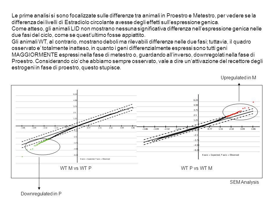 Le prime analisi si sono focalizzate sulle differenze tra animali in Proestro e Metestro, per vedere se la differenza dei livelli di Estradiolo circol