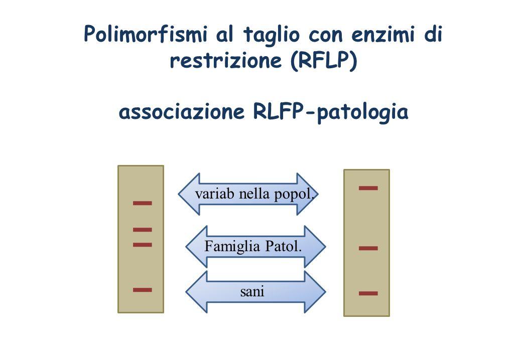Polimorfismi al taglio con enzimi di restrizione (RFLP) associazione RLFP-patologia Famiglia Patol. sani variab nella popol.