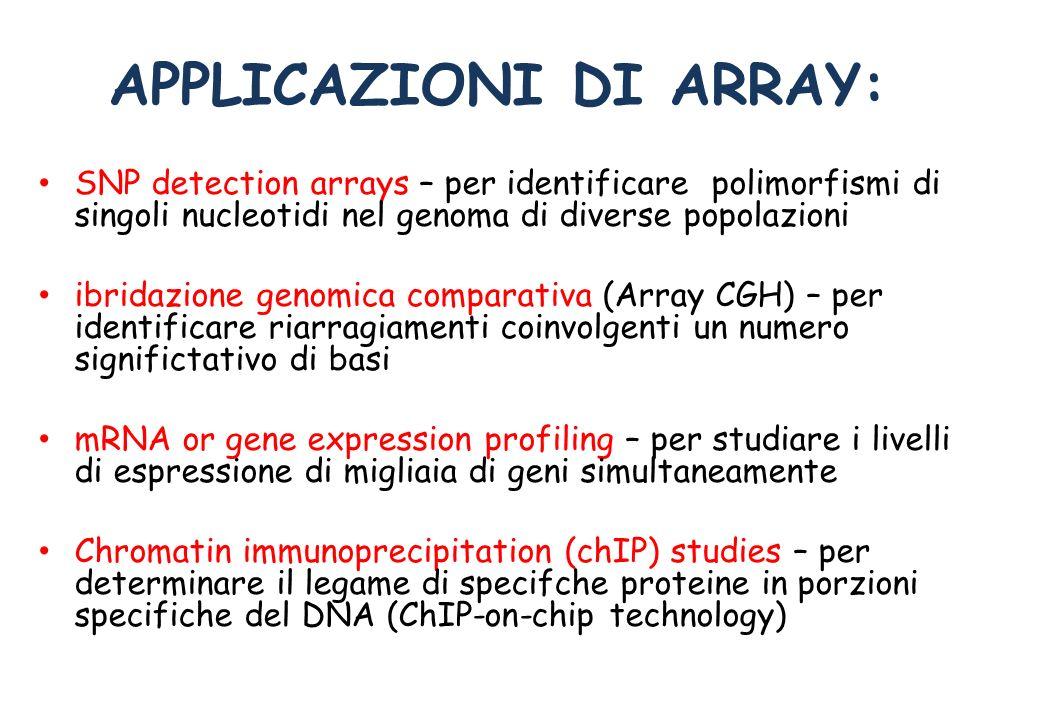 APPLICAZIONI DI ARRAY: SNP detection arrays – per identificare polimorfismi di singoli nucleotidi nel genoma di diverse popolazioni ibridazione genomi