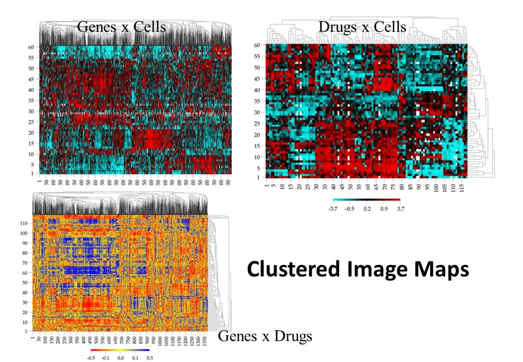 Clustered Image Maps Drugs x Cells Genes x Cells Genes x Drugs