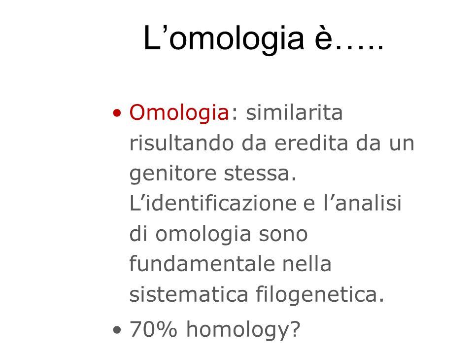 Lomologia è….. Omologia: similarita risultando da eredita da un genitore stessa. Lidentificazione e lanalisi di omologia sono fundamentale nella siste