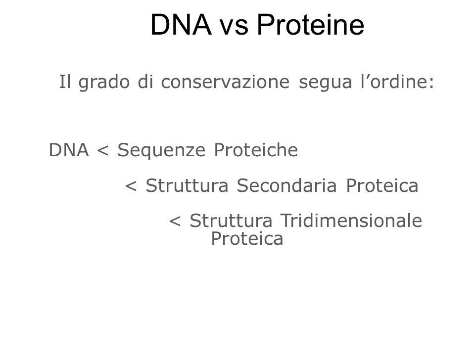 Il grado di conservazione segua lordine: DNA < Sequenze Proteiche < Struttura Secondaria Proteica < Struttura Tridimensionale Proteica DNA vs Proteine