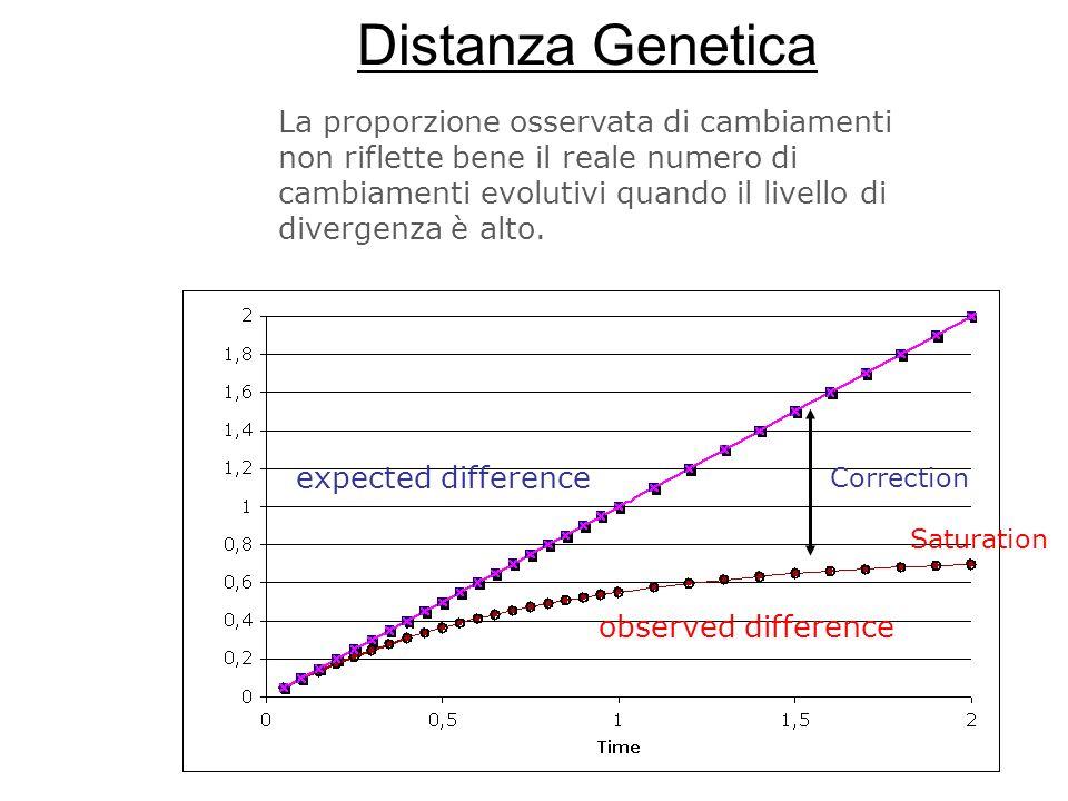 Distanza Genetica expected difference observed difference La proporzione osservata di cambiamenti non riflette bene il reale numero di cambiamenti evo