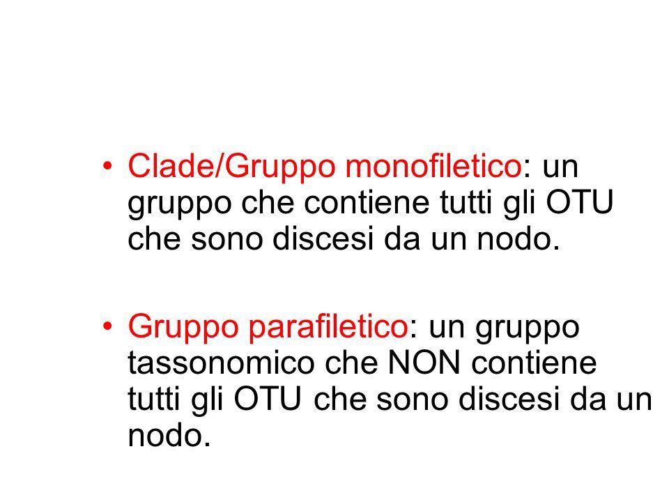 Clade/Gruppo monofiletico: un gruppo che contiene tutti gli OTU che sono discesi da un nodo. Gruppo parafiletico: un gruppo tassonomico che NON contie