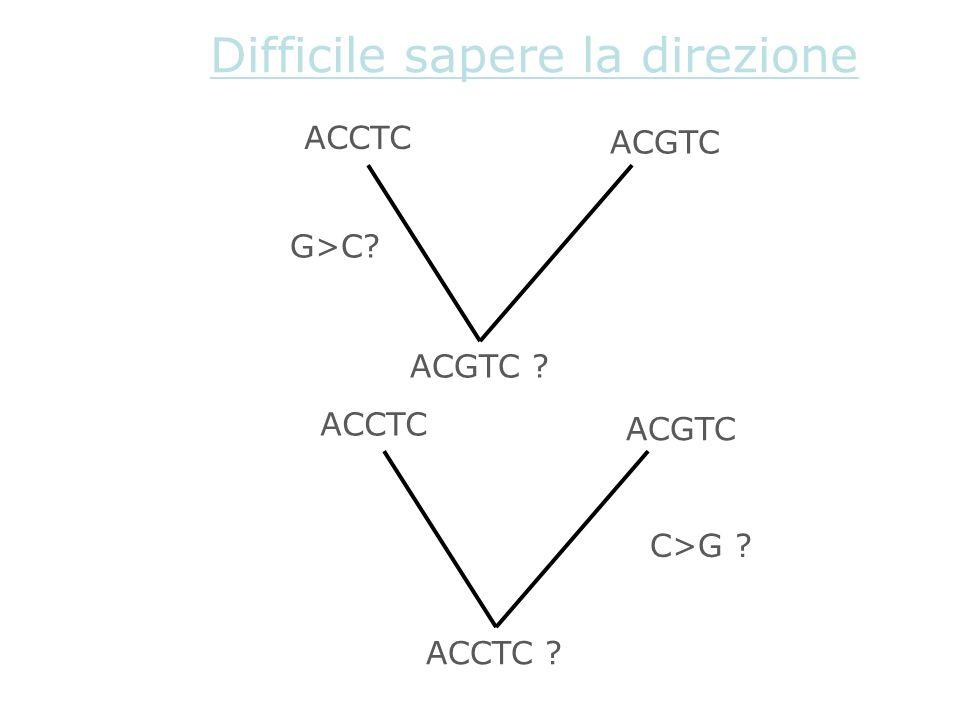 ACCTC ACGTC ACGTC ? G>C? Difficile sapere la direzione ACCTC ACGTC ACCTC ? C>G ?