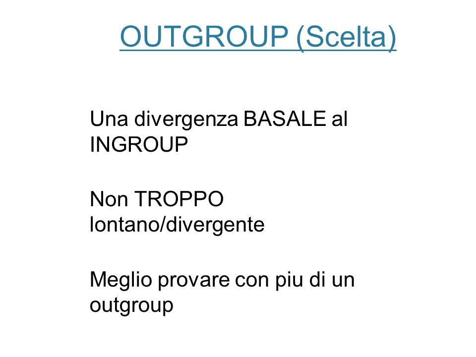 OUTGROUP (Scelta) Una divergenza BASALE al INGROUP Non TROPPO lontano/divergente Meglio provare con piu di un outgroup