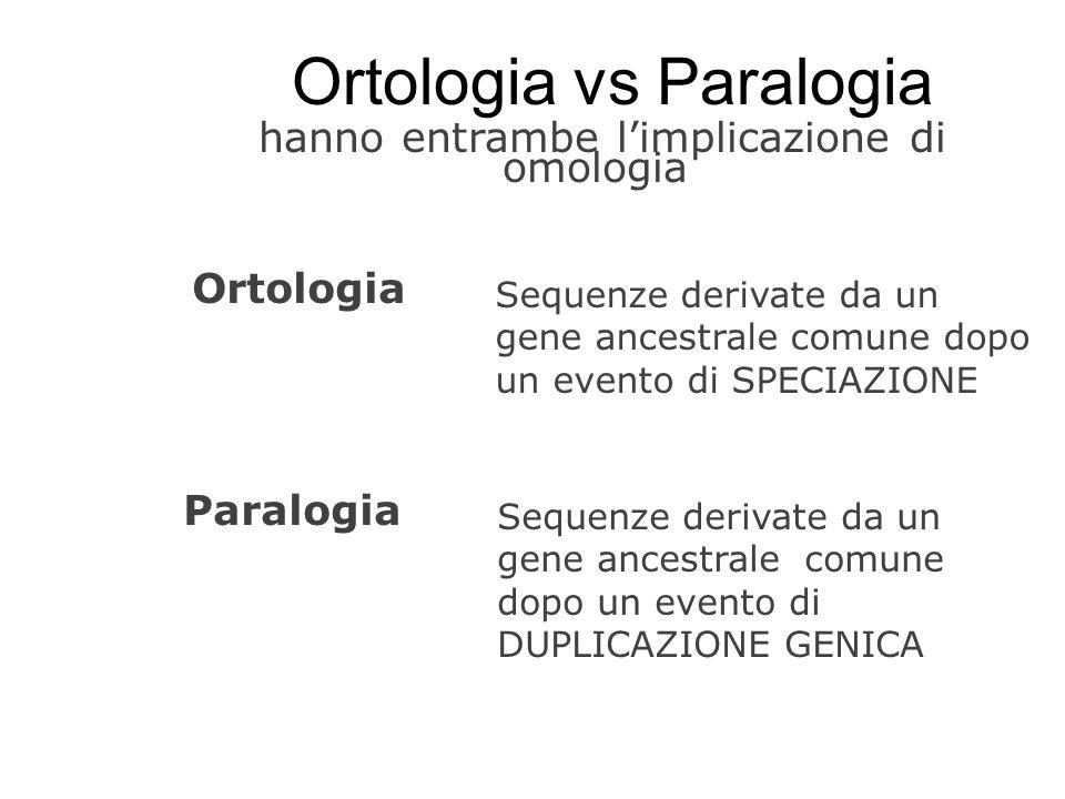 hanno entrambe limplicazione di omologia Ortologia vs Paralogia Ortologia Sequenze derivate da un gene ancestrale comune dopo un evento di SPECIAZIONE