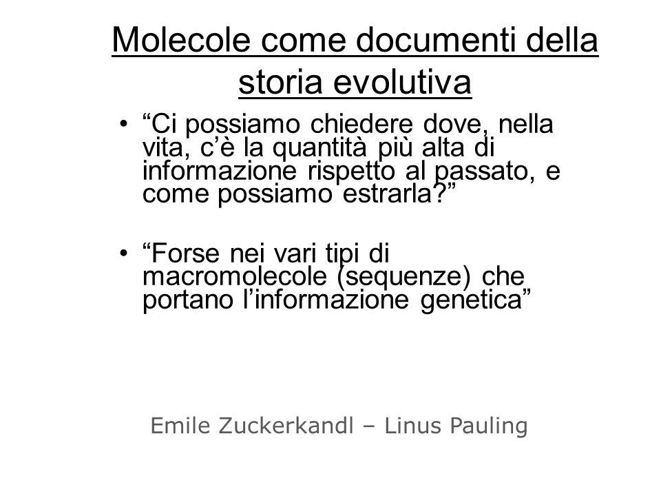 Evoluzione Molecolare TUTTI le sequenze molecolari (naturali) sono prodotti di processi evolutivi Possiamo usare sequenze per inferire rapporti evolutivi tra sequenze (e tra organismi) Se riusciamo capire come costretti selettivi influenzano levoluzione di diversi tipi di sequenze (geni codificanti, regione promotrice, junk DNA etc), magari potremmo PREDIRE il ruolo svolto da sequenze sotto esame.