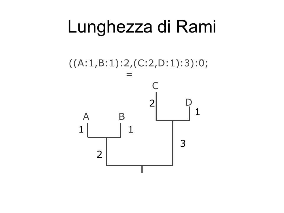 Lunghezza di Rami ((A:1,B:1):2,(C:2,D:1):3):0; = AB C D 11 2 3 1 2