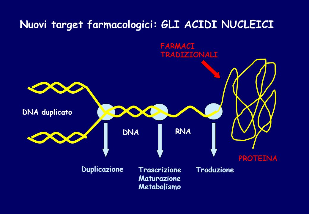 ACIDI NUCLEICI COME TERAPEUTICI 1.ANTISENSO: desossinucleotidi complementari con lm-RNA 2.ANTIGENE: desossinucleotidi complementari al DNA 3.RIBOZIMA: ribonucleotidi catalalitici complementari a RNA 4.APTAMERI: desossi e ribonucleotidi complementari a una sequenza aminoacidica (competono con lRNA nella interazione tra RNA e proteina) 5.DECOY:DNA complementare a sequenze aminoacidiche (competono con sequenze di DNA nellinterazione DNA- proteina) 6.siRNA: RNA complementari a sequenze specifiche