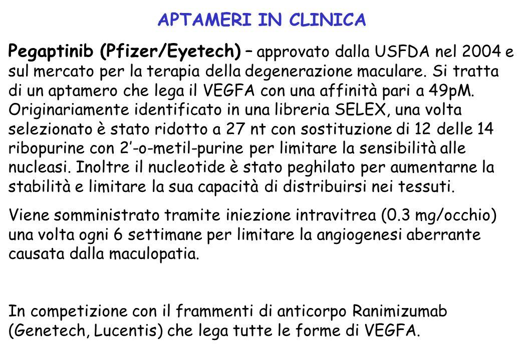 Pegaptinib (Pfizer/Eyetech) – approvato dalla USFDA nel 2004 e sul mercato per la terapia della degenerazione maculare. Si tratta di un aptamero che l