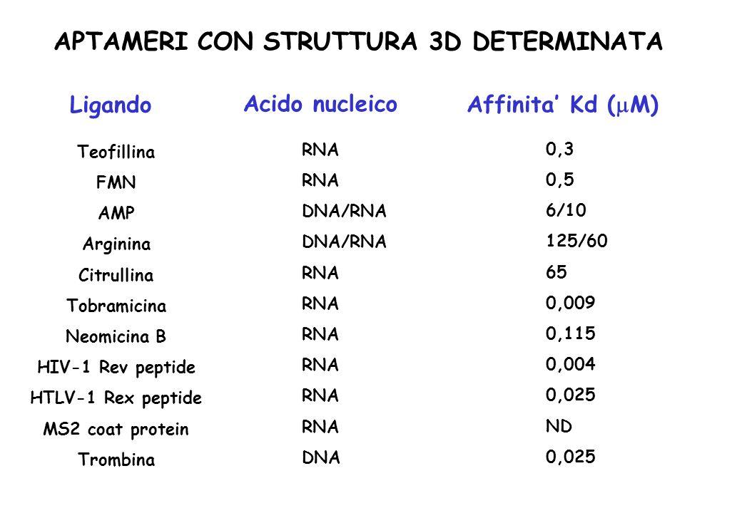 APTAMERI CON STRUTTURA 3D DETERMINATA Ligando Affinita Kd ( M)Acido nucleico Teofillina FMN AMP Arginina Citrullina Tobramicina Neomicina B HIV-1 Rev