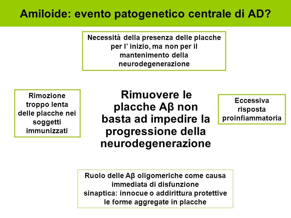 Rimuovere le placche Aβ non basta ad impedire la progressione della neurodegenerazione Amiloide: evento patogenetico centrale di AD? Ruolo delle Aβ ol