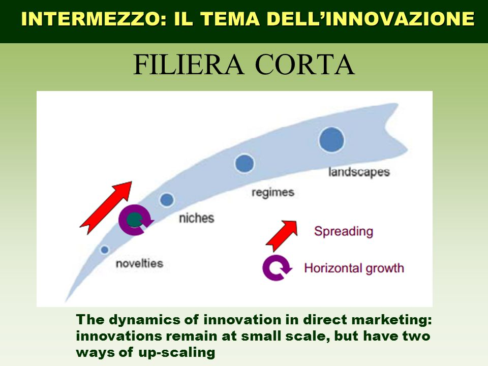 FILIERA CORTA INTERMEZZO: IL TEMA DELLINNOVAZIONE The dynamics of innovation in direct marketing: innovations remain at small scale, but have two ways of up-scaling