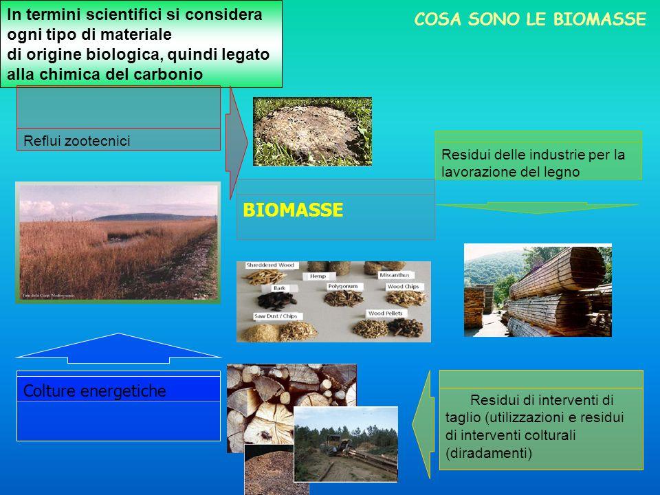 In termini scientifici si considera ogni tipo di materiale di origine biologica, quindi legato alla chimica del carbonio BIOMASSE Reflui zootecnici Re