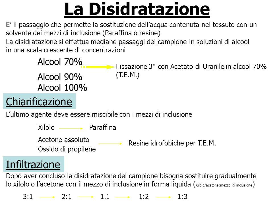 La Disidratazione E il passaggio che permette la sostituzione dellacqua contenuta nel tessuto con un solvente dei mezzi di inclusione (Paraffina o res