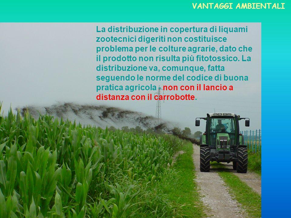 La distribuzione in copertura di liquami zootecnici digeriti non costituisce problema per le colture agrarie, dato che il prodotto non risulta più fit