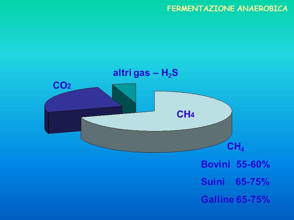 1° FASE IDROLISI - attacco enzimatico polimeri organici monomeri 2° FASE ACIDOGENESI - composti idrolizzati acidi grassi volatili, CO 2, NH 3 e H 2 ; 3° FASE METANOGENESI composti semplici a mezzo di batteri anaerobici CH 4 e CO 2 FASI della DIGESTIONE