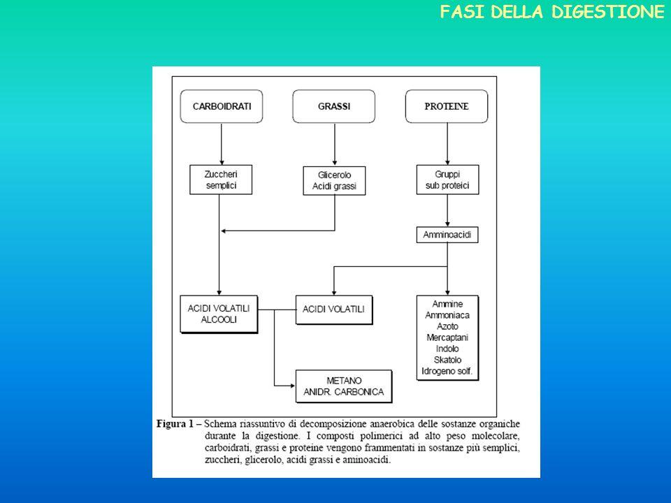 dagli anni 90: rilancio degli impianti per lagricoltura (prima in Europa e oggi in Italia); co-digestione reflui zootecnici con altre biomasse obiettivi energetici : recupero di energia ambientali : minori odori, igienizzazione del liquame agronomici: distribuibilità in copertura per leliminata fitotossicità (resta inalterato il potere fertilizzante) CENNI SULLEVOLUZIONE TECNOLOGICA