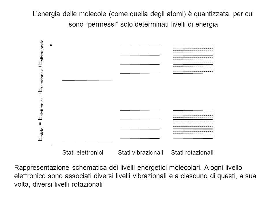 Rappresentazione schematica dei livelli energetici molecolari. A ogni livello elettronico sono associati diversi livelli vibrazionali e a ciascuno di