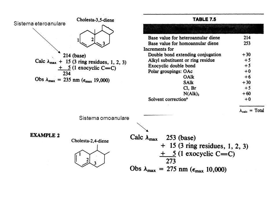 Sistema eteroanulare Sistema omoanulare