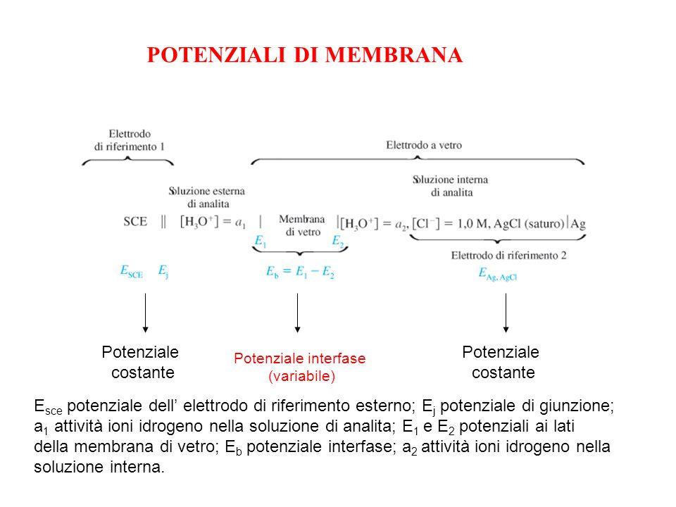 Potenziale interfase (variabile) Potenziale costante Potenziale costante E sce potenziale dell elettrodo di riferimento esterno; E j potenziale di giu