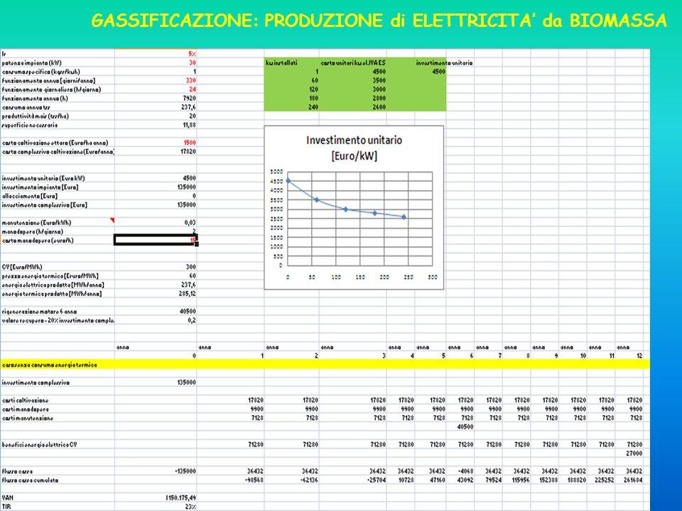 GASSIFICAZIONE: PRODUZIONE di ELETTRICITA da BIOMASSA