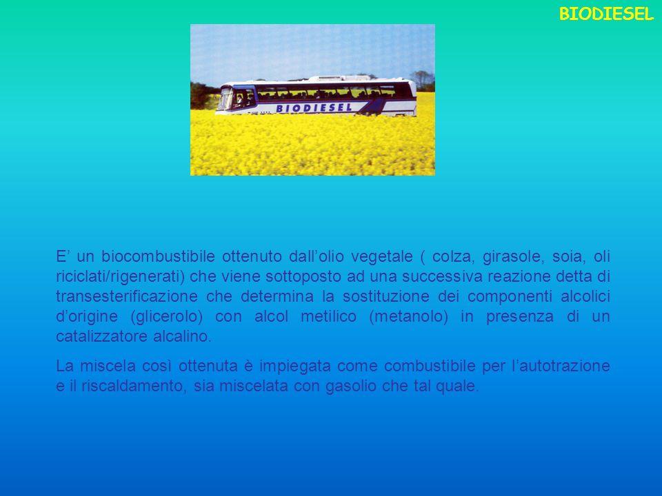 E un biocombustibile ottenuto dallolio vegetale ( colza, girasole, soia, oli riciclati/rigenerati) che viene sottoposto ad una successiva reazione det