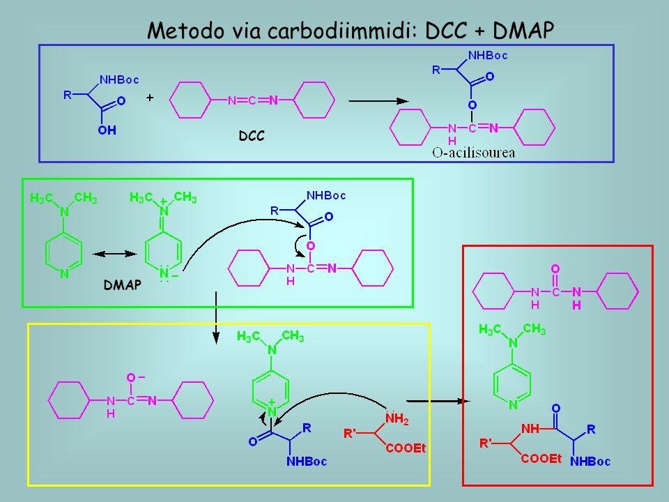 Metodo via carbodiimmidi: DCC + DMAP DCC DMAP