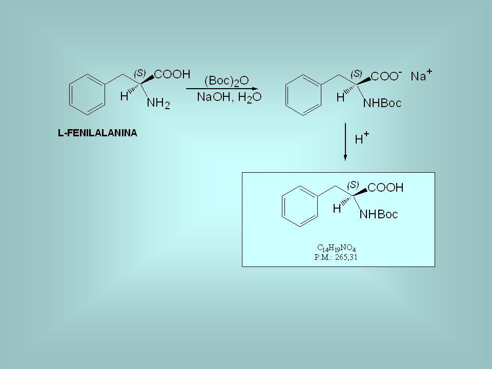 I giorno: protezione della fenilalanina con il Boc 0,8 g di fenilalanina vengono posti in un pallone da 100 ml.