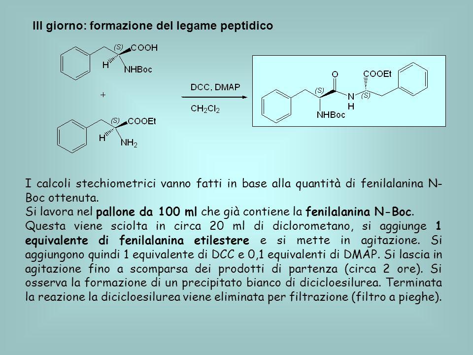III giorno: formazione del legame peptidico I calcoli stechiometrici vanno fatti in base alla quantità di fenilalanina N- Boc ottenuta.