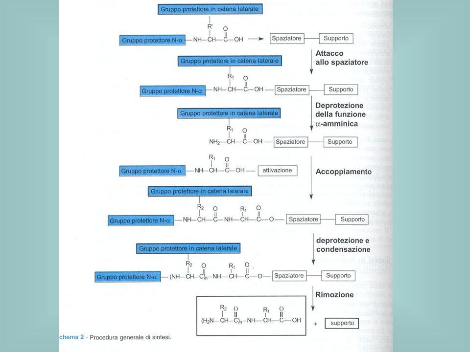 La rimozione del gruppo N-protettore deve avvenire senza dare reazioni indesiderate con il legame amminoacido-resina né con i gruppi protettori delle funzionalità presenti sulle catene laterali.