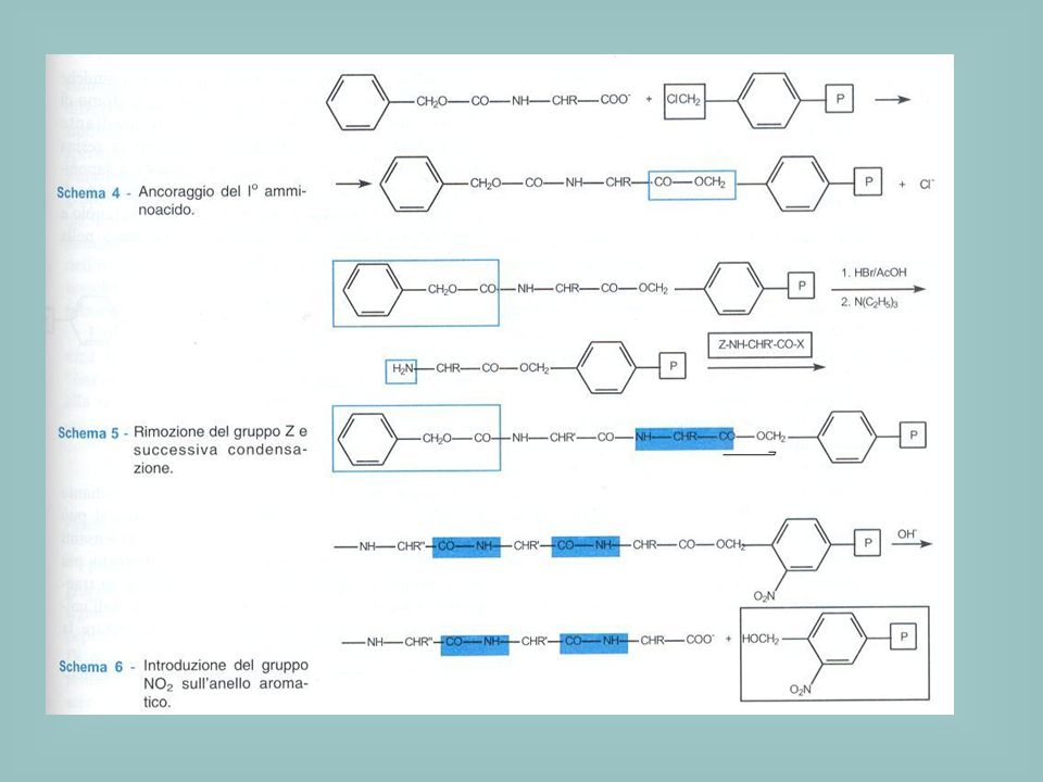Vantaggi rispetto al coupling in soluzione: -si evitano i processi di purificazione (si effettua una semplice filtrazione) -si riducono enormemente i tempi di produzione del peptide -si evitano i problemi relativi alla solubilità dei peptidi Una volta completata la sintesi del peptide, questo viene allontanato dalla resina utilizzando HF (poco maneggevole, necessità di lavorare con contenitori in teflon) Per ovviare a questo problema sono state messe a punto nuove resine più sensibili agli acidi dalle quali poter staccare il peptide in condizioni più blande, es.