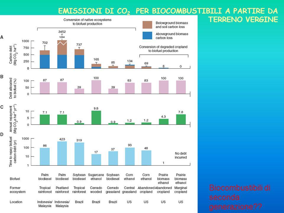 EMISSIONI DI CO 2 PER BIOCOMBUSTIBILI A PARTIRE DA TERRENO VERGINE Biocombustibili di seconda generazione??