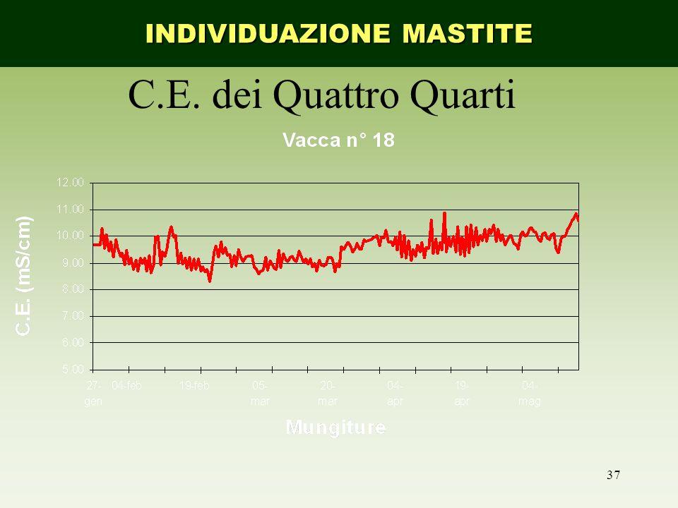 37 C.E. dei Quattro Quarti INDIVIDUAZIONE MASTITE