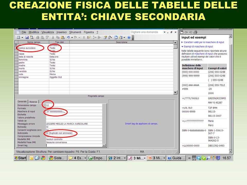 CREAZIONE FISICA DELLE TABELLE DELLE ENTITA: CHIAVE SECONDARIA