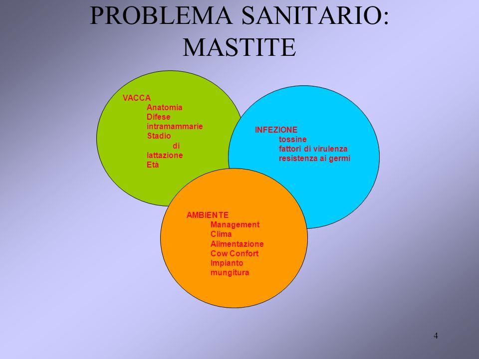 4 PROBLEMA SANITARIO: MASTITE VACCA Anatomia Difese intramammarie Stadio di lattazione Età INFEZIONE tossine fattori di virulenza resistenza ai germi