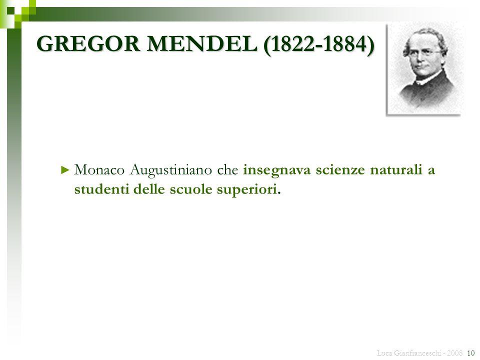 Luca Gianfranceschi - 2008 10 Monaco Augustiniano che insegnava scienze naturali a studenti delle scuole superiori. GREGOR MENDEL (1822-1884)