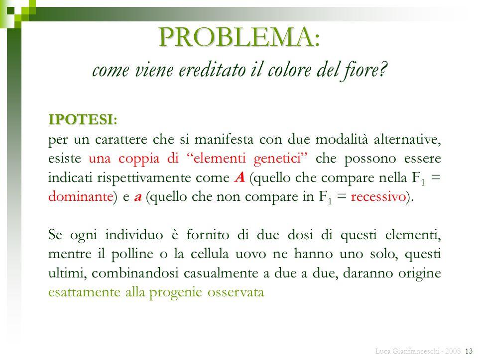 Luca Gianfranceschi - 2008 13 PROBLEMA PROBLEMA: come viene ereditato il colore del fiore? IPOTESI IPOTESI: per un carattere che si manifesta con due
