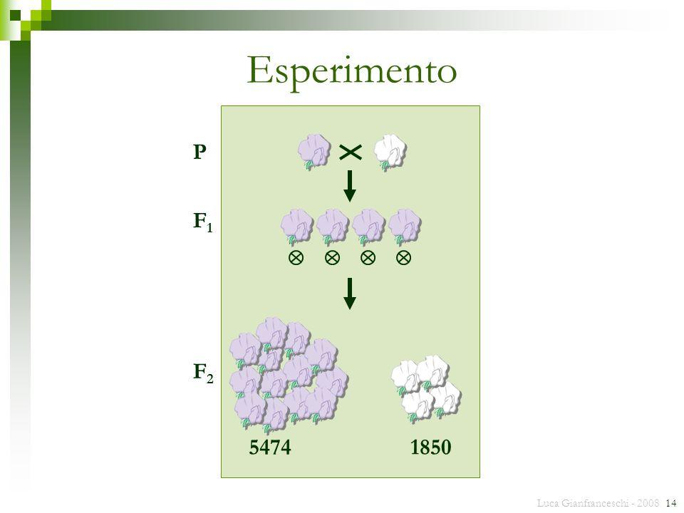 Luca Gianfranceschi - 2008 14 Esperimento P F1F1 F2F2 54741850