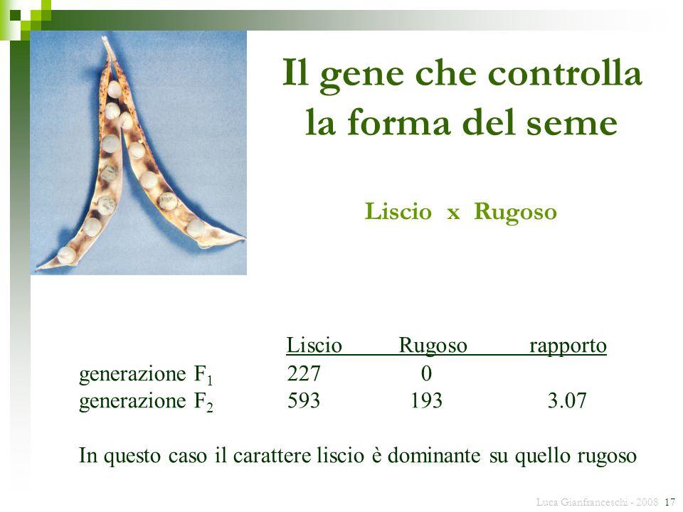 Luca Gianfranceschi - 2008 17 generazione F 1 2270 generazione F 2 5931933.07 In questo caso il carattere liscio è dominante su quello rugoso LiscioRu