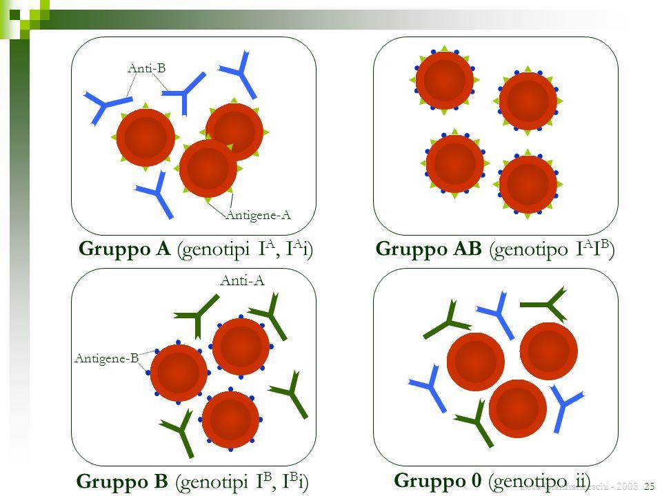 Luca Gianfranceschi - 2008 25 Anti-B Antigene-A Gruppo A (genotipi I A, I A i) Gruppo 0 (genotipo ii) Anti-A Antigene-B Gruppo B (genotipi I B, I B i)