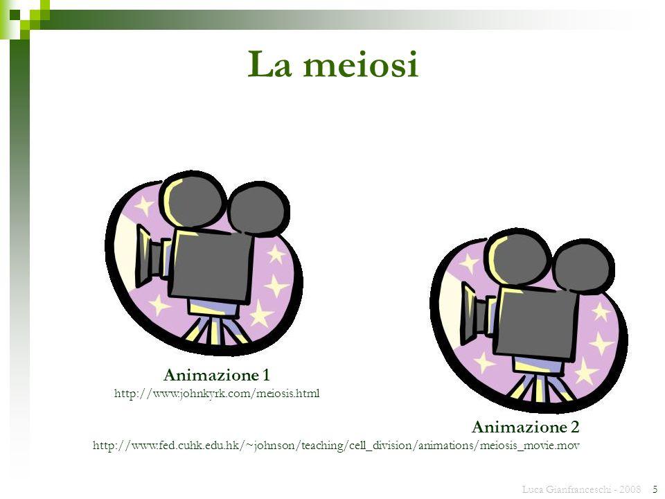 Luca Gianfranceschi - 2008 5 La meiosi Animazione 1 http://www.johnkyrk.com/meiosis.html Animazione 2 http://www.fed.cuhk.edu.hk/~johnson/teaching/cel